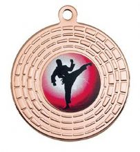 Bronze 50mm Martial Arts Medal
